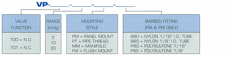 VP-700 Ordering Information